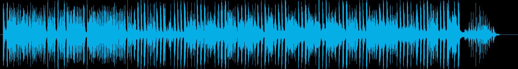 サンフェルミンとヤシの木の再生済みの波形