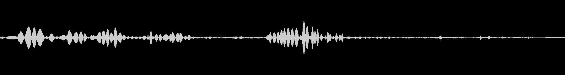 ゴクリ、のどを鳴らす音の未再生の波形