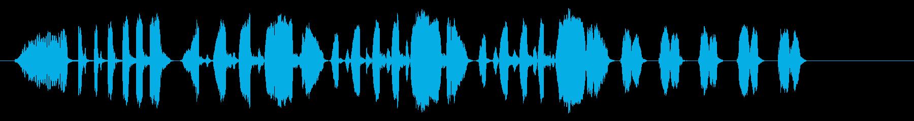 ラピッド・トワールズ-(ウィズ・ホ...の再生済みの波形