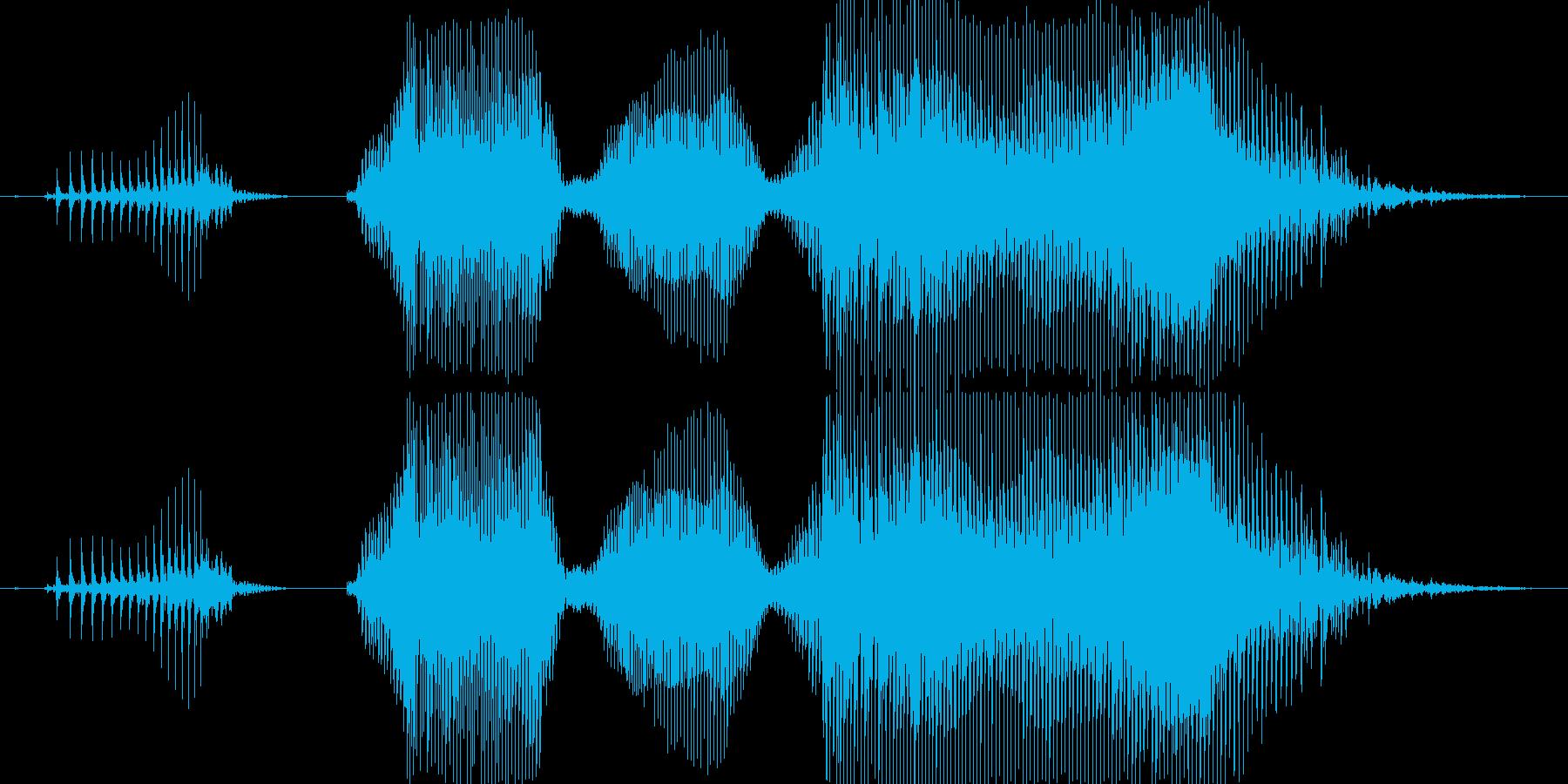 「当たりだよぉ!」(なぜか怒ってる)の再生済みの波形