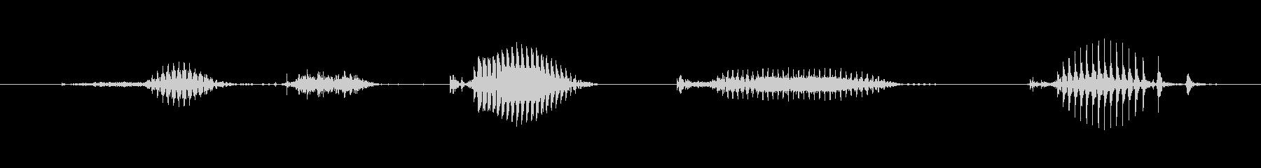 【日数・経過】2日経過の未再生の波形
