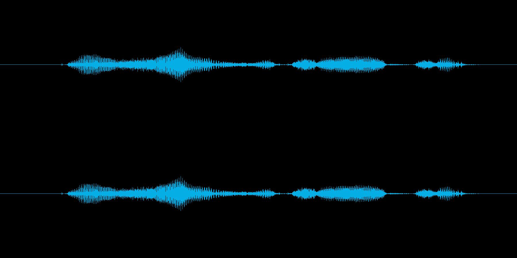 【日】28日の再生済みの波形