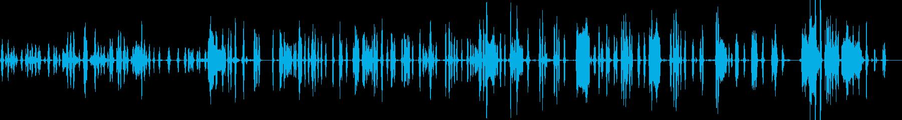 犬、犬の怒っている犬、動物; DI...の再生済みの波形