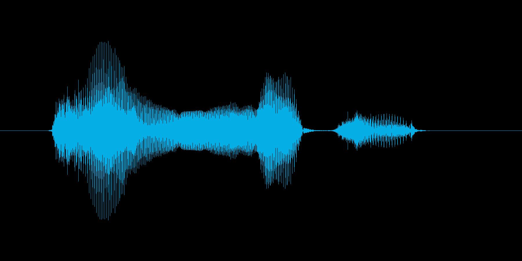 12月(12月・十二月)の再生済みの波形