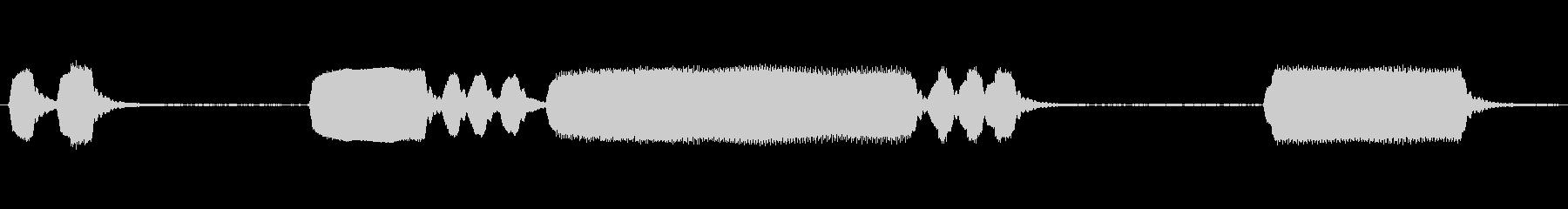 1926フォード:さまざまなホンクの未再生の波形