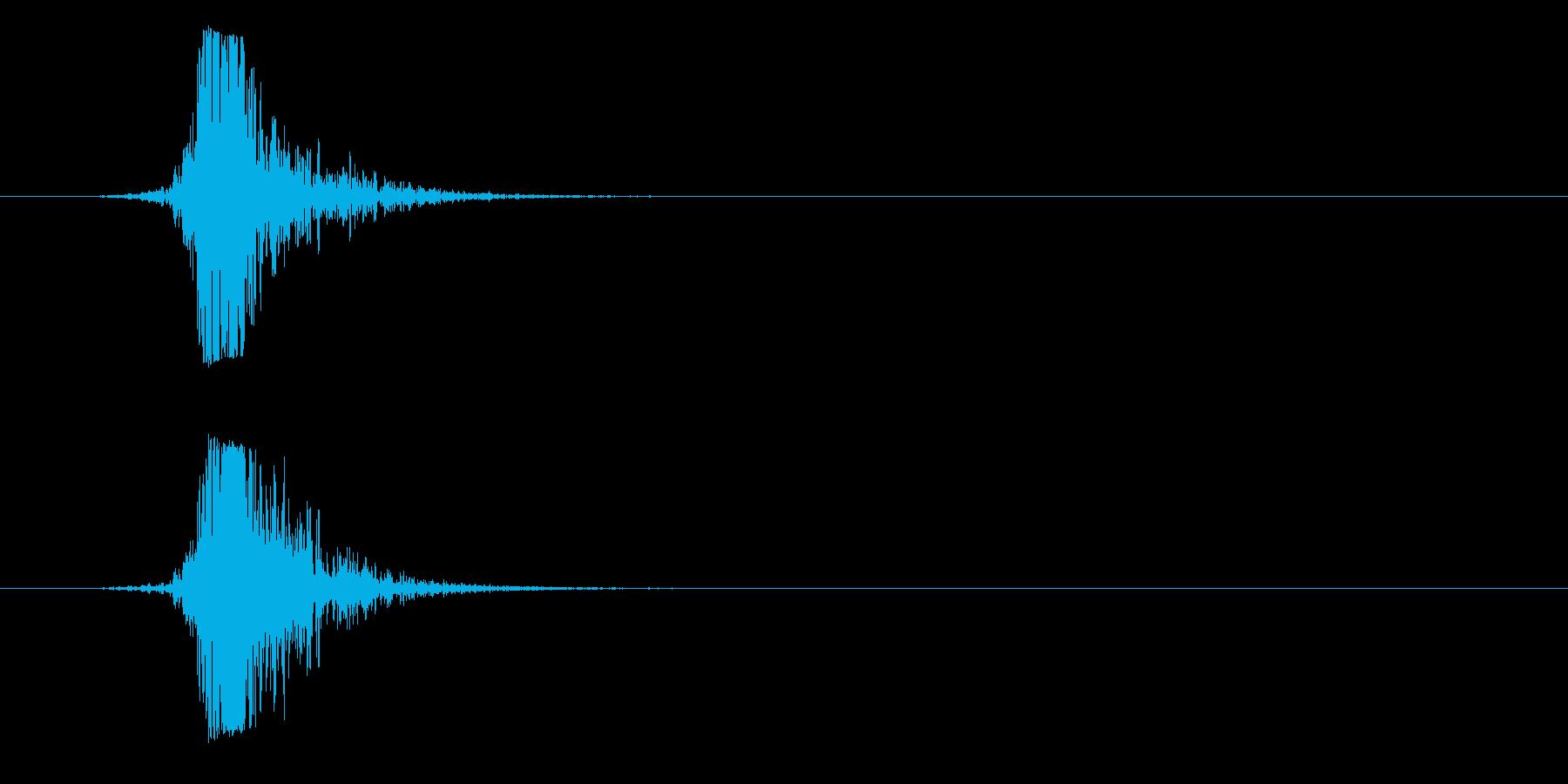 高く、速いスイカ、フォリーの再生済みの波形