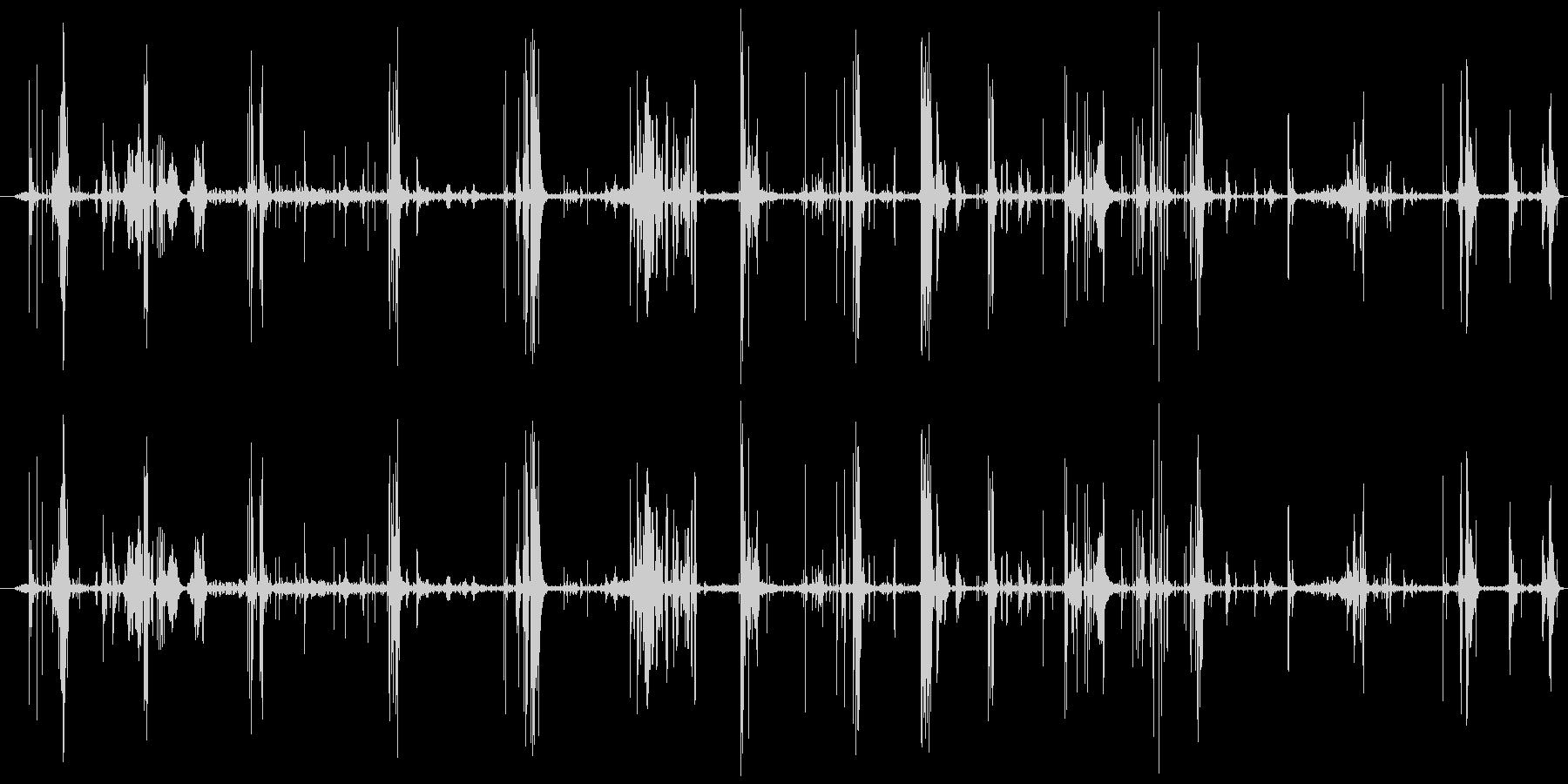 モンスター 肉食09の未再生の波形