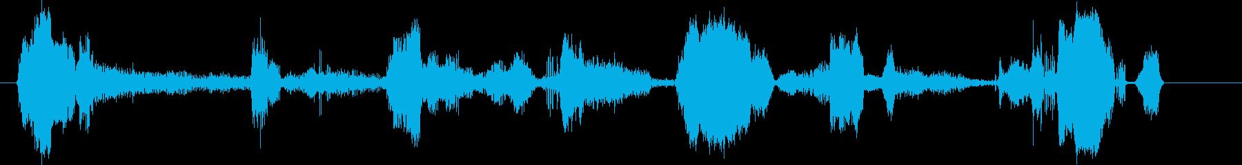 プーマ(クーガー)うなり声。グルー...の再生済みの波形