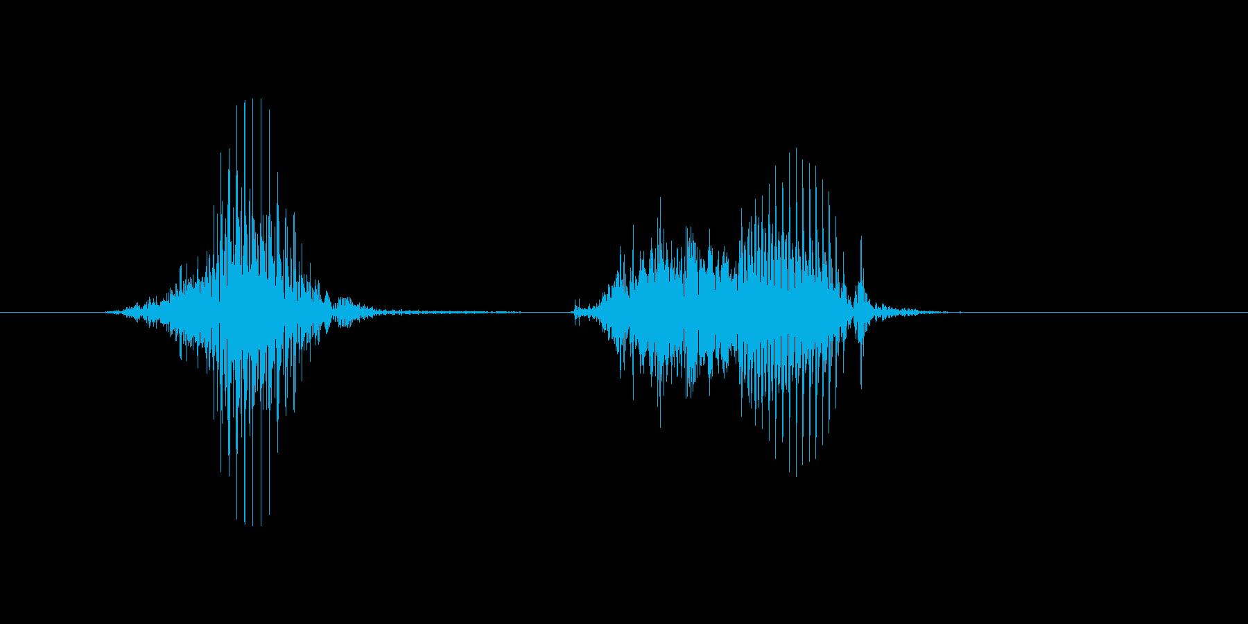 8(8、はち)の再生済みの波形
