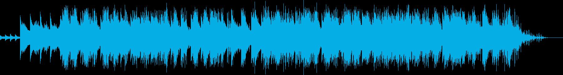 エレクトロニック 説明的 エスニッ...の再生済みの波形
