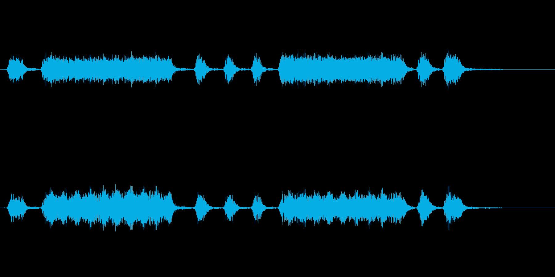 大きくて様々なショート、ミディアム...の再生済みの波形