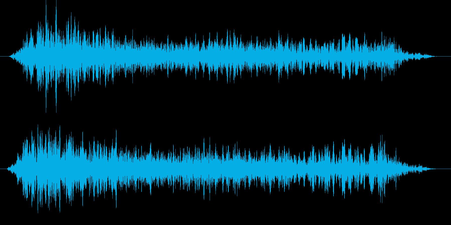 野鳥のうるさい鳴き声 ギィーーッの再生済みの波形