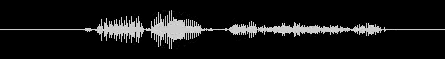 【干支】トラ年の未再生の波形