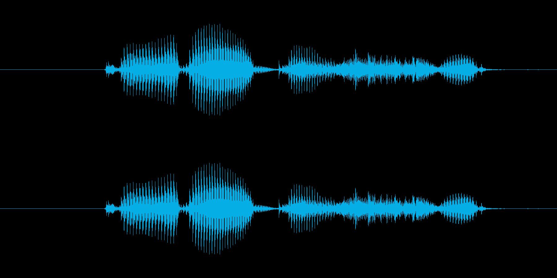 【干支】トラ年の再生済みの波形
