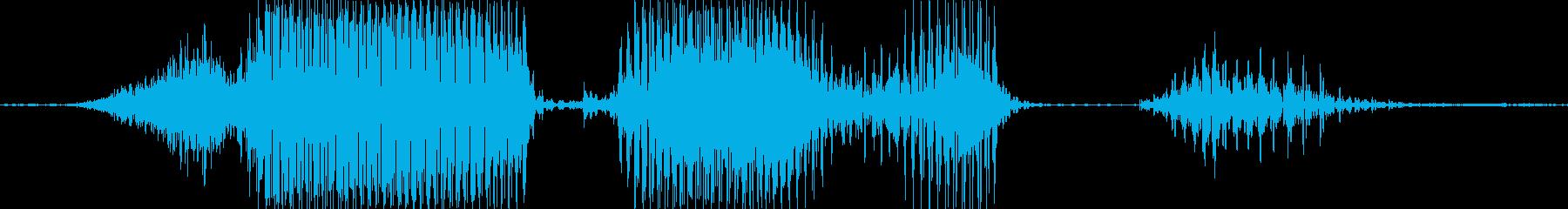 正解発表の再生済みの波形