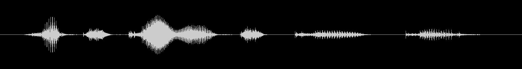 【日数・経過】8ヶ月経過 (はち)の未再生の波形