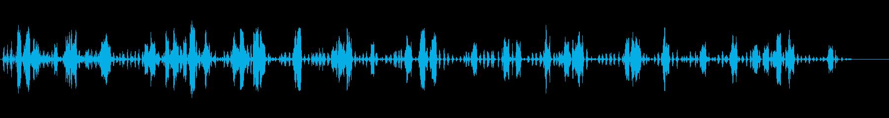 ヘンハウス2、バード; DIGIF...の再生済みの波形