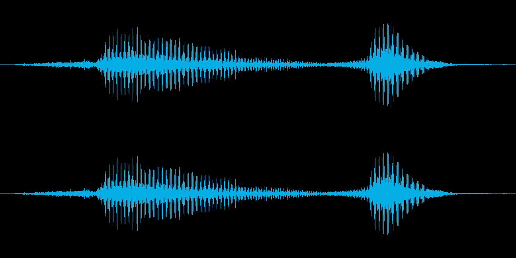 せーのっ♪(子供)の再生済みの波形