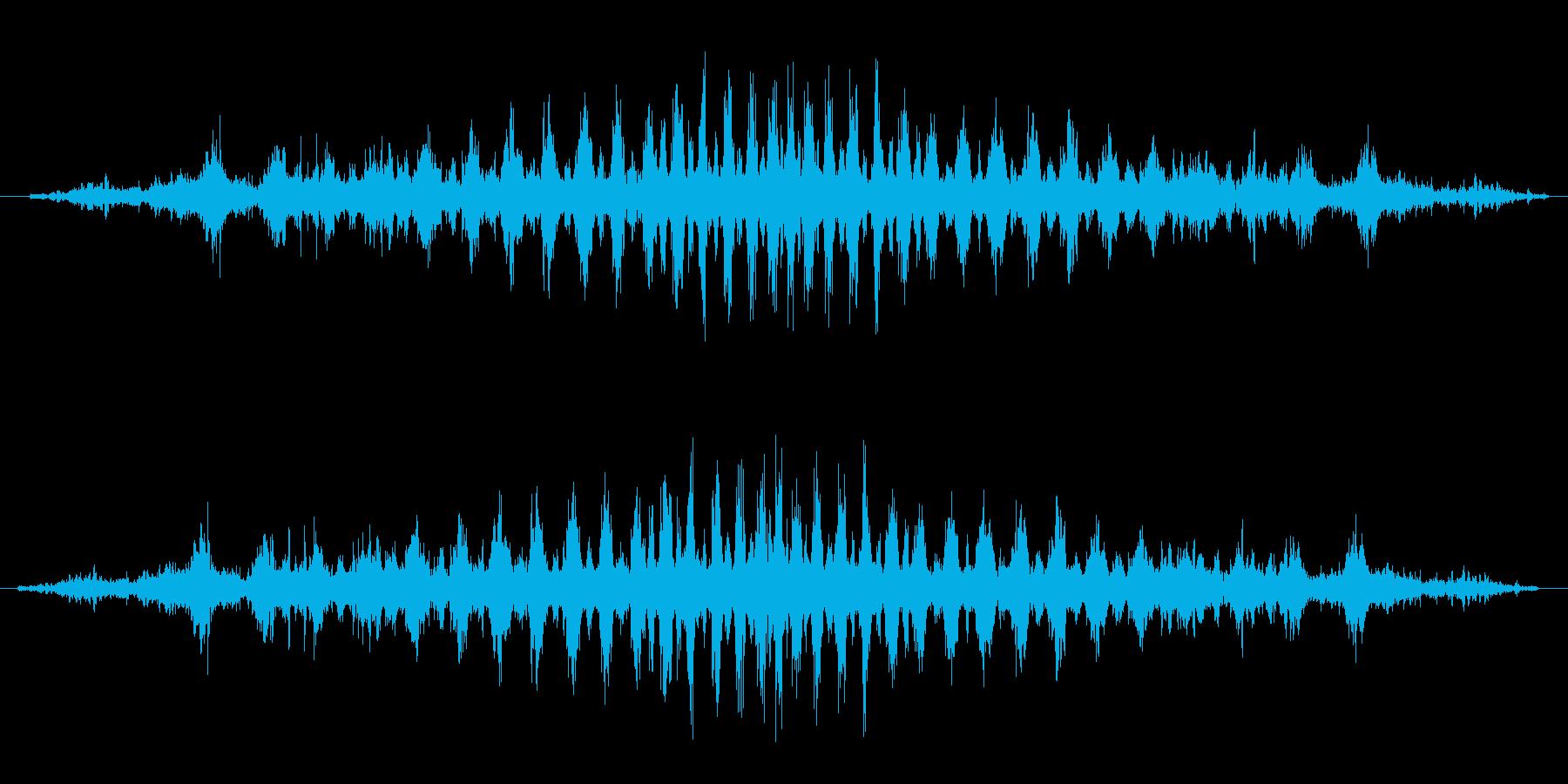 シュワシュワ(回転音)の再生済みの波形