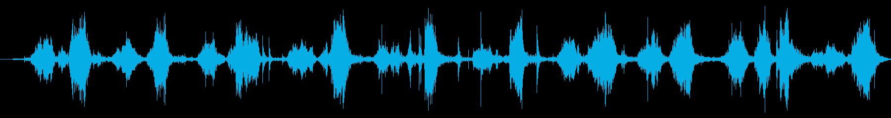 ニンジン:グレーティングを閉じるの再生済みの波形