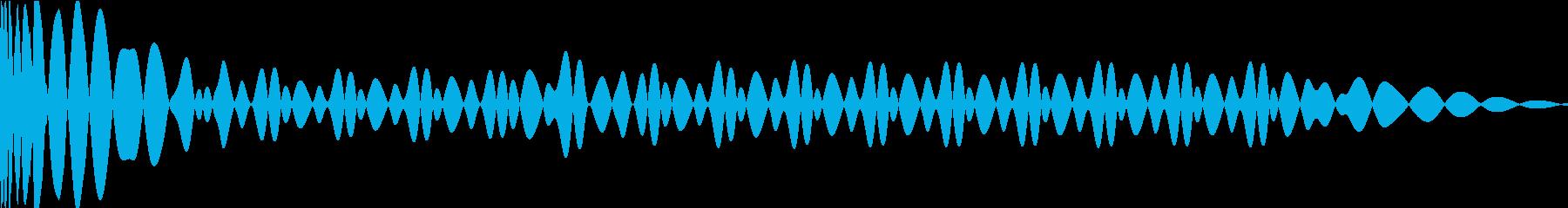 EDMキック キーD#の再生済みの波形