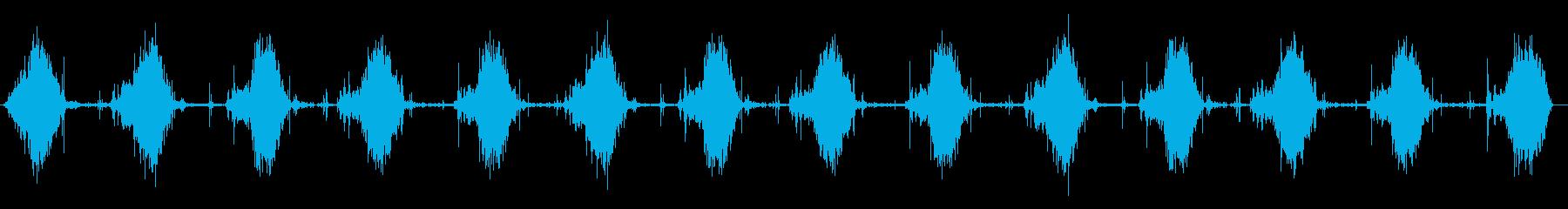 メタルファンレーキ:レーキグラス、...の再生済みの波形