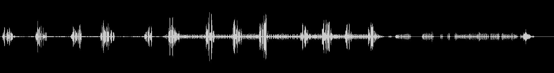 一般的なクロウタドリの未再生の波形