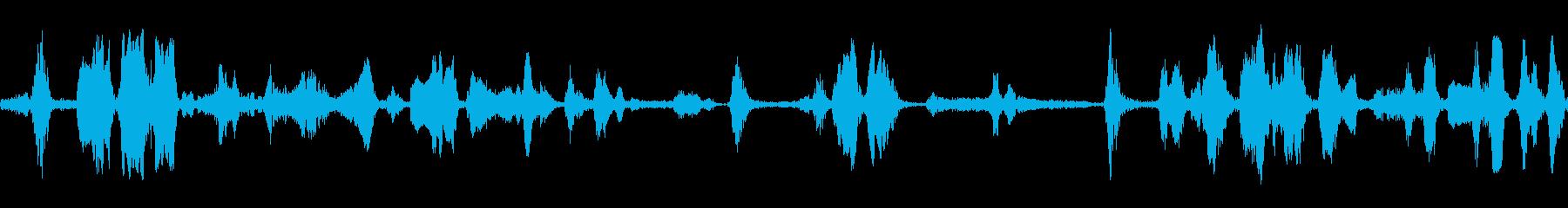 チグルかわいいの再生済みの波形