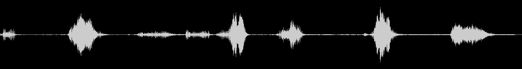 農場で大きなイノシシのうなり声の未再生の波形