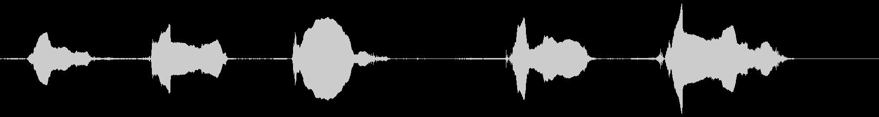 ドッグバーキング8、シベリアンハス...の未再生の波形
