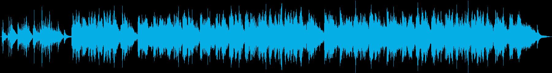 世界的な二胡奏者の生演奏 切なく寂しい曲の再生済みの波形
