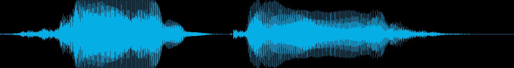 サンキュー!の再生済みの波形