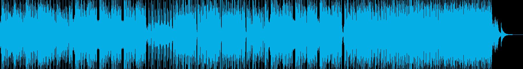 民族的で原始的な雰囲気を演出 エレキ有の再生済みの波形