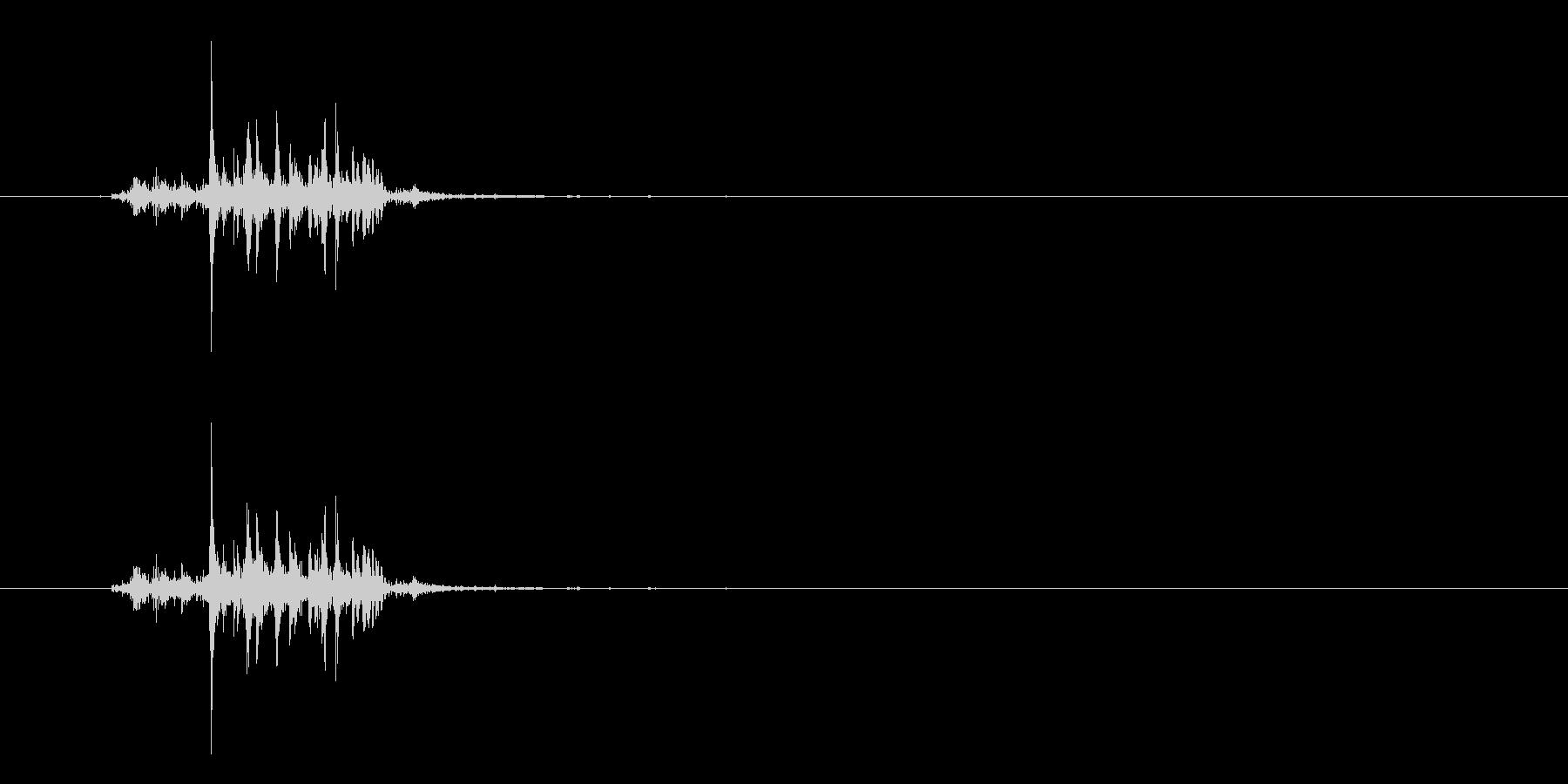 セレリー:ファストバイト、フードフードの未再生の波形