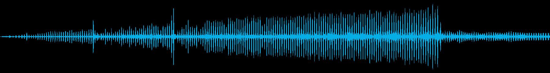 トリリング、スプラッシュ、ライトエ...の再生済みの波形