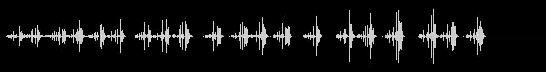 鳩の未再生の波形