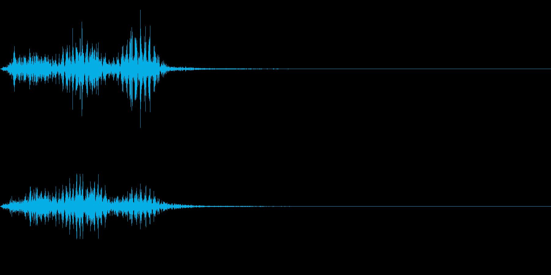 【生録音】フラミンゴの鳴き声 38の再生済みの波形
