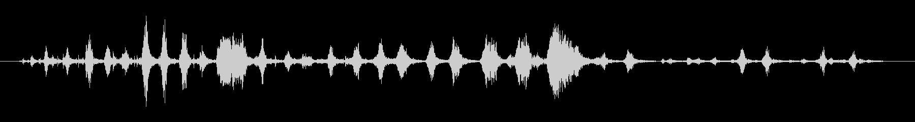 鳥 チキンカックルロング01の未再生の波形