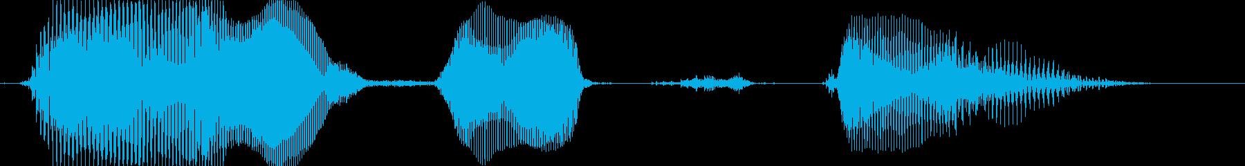 パーフェクトの再生済みの波形