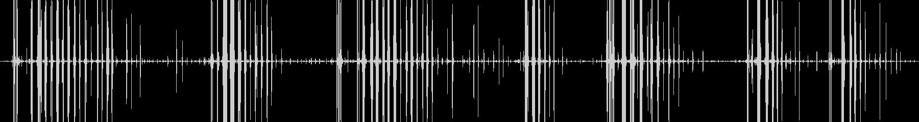固い煎餅を食べるガリガリという音の未再生の波形