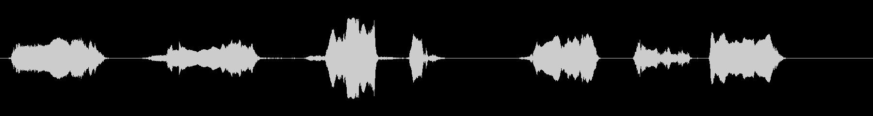 ブルベローズ;さまざまな、近い視点の未再生の波形