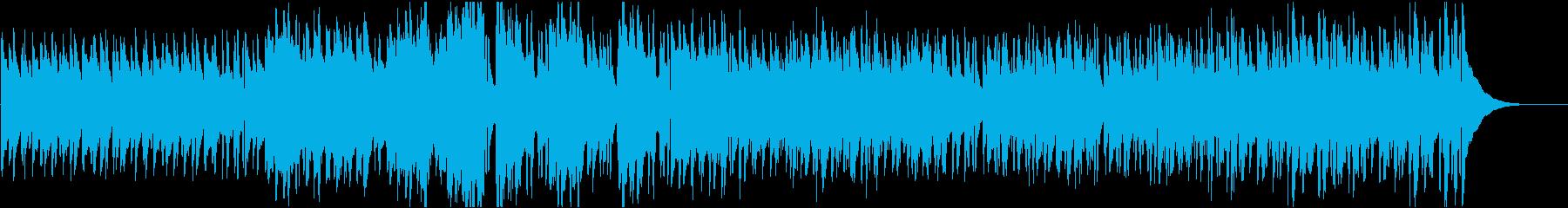 企業VP51 16bit48kHzVerの再生済みの波形