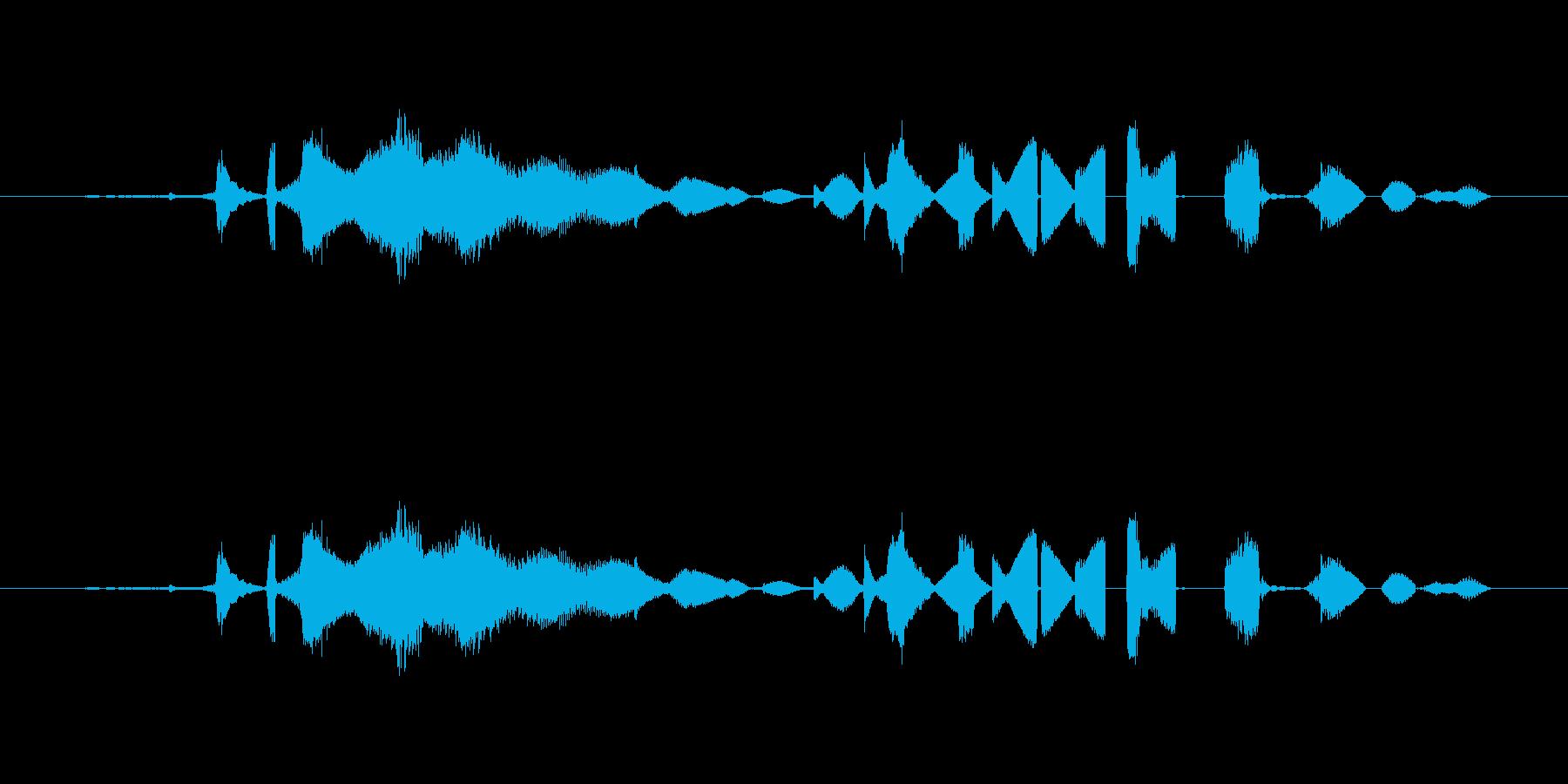 特撮 グリッチを確認03の再生済みの波形
