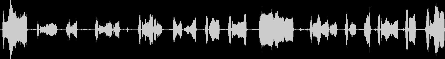キャメル・モアン・ロングの未再生の波形