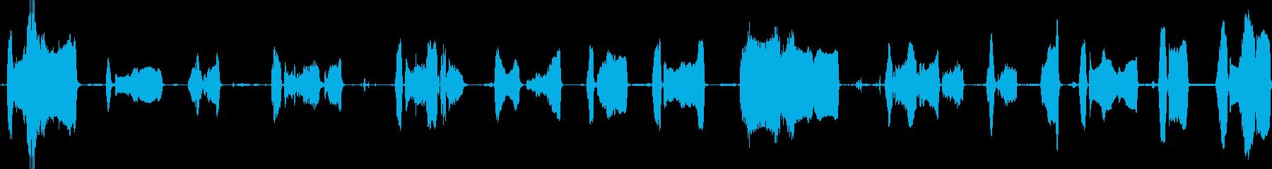 キャメル・モアン・ロングの再生済みの波形