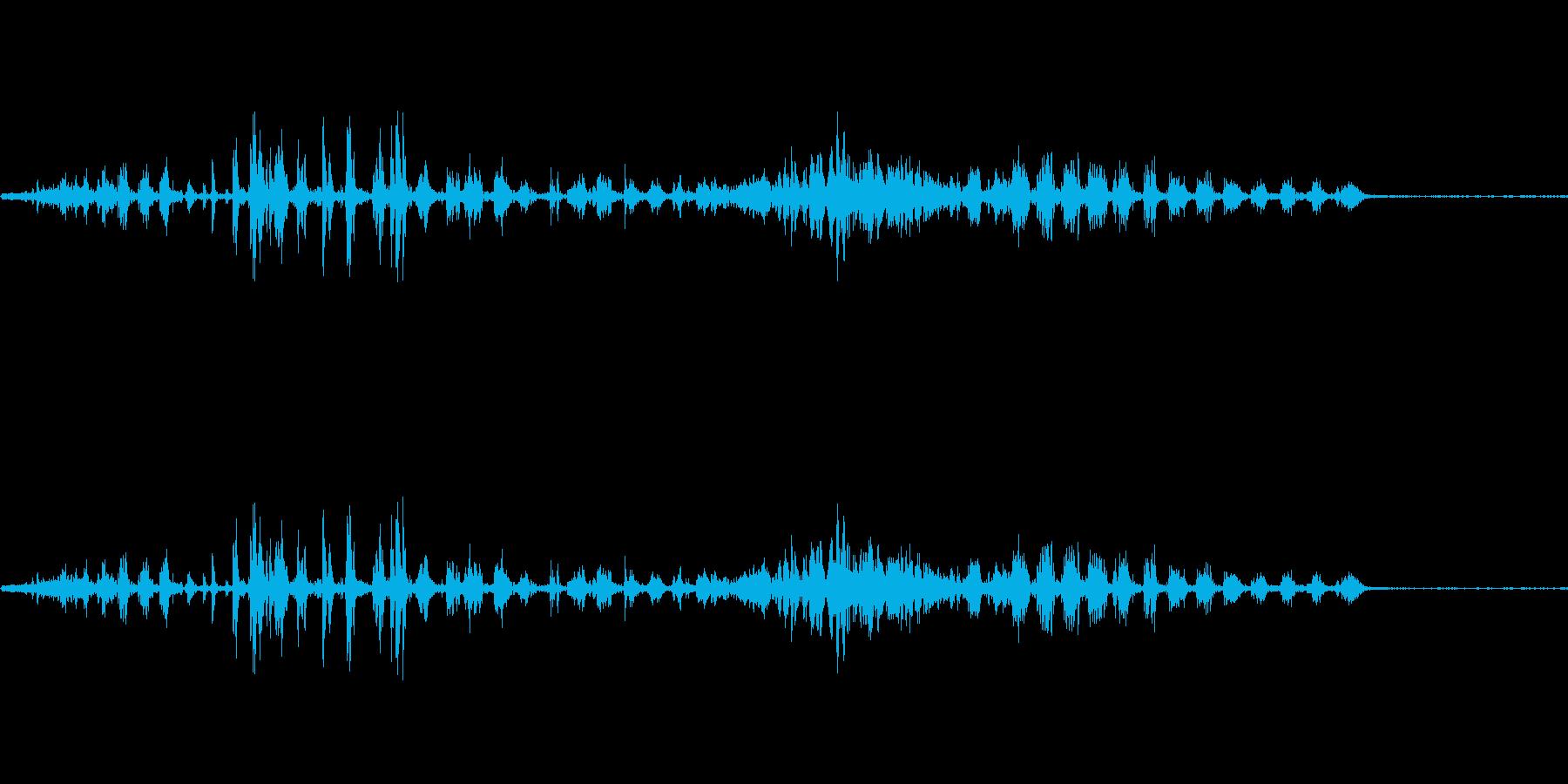 ピットブルドッグインヘールガーグルの再生済みの波形