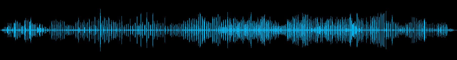 リード・ウォーブラー、アクロセファ...の再生済みの波形
