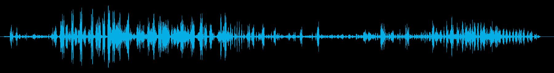 フランドルの再生済みの波形