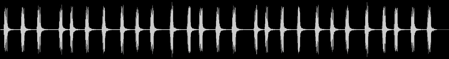フクロウ-森林鳥の未再生の波形