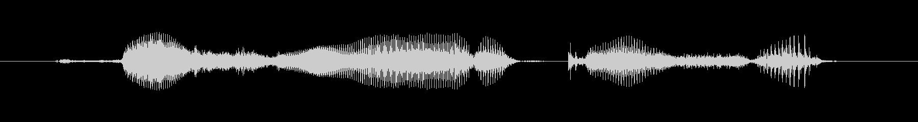 PCR検査の未再生の波形